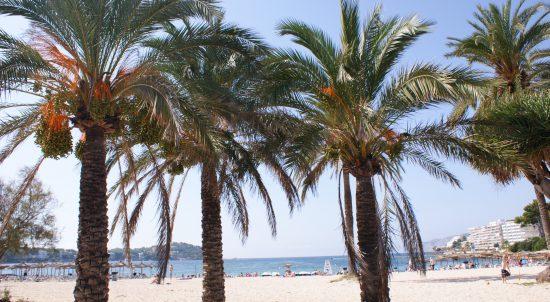 Hiszpania  Majorka